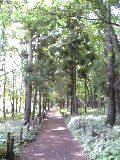 Park1_6
